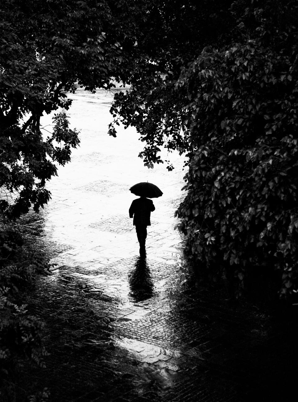 paul rain argus